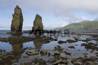 columnar rocks or kekury during the low tide on the coast of the island of Beringa