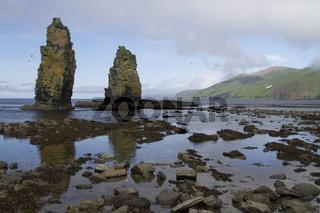 columnar rocks or kekury during the low tide on the coast of the island of Beringa