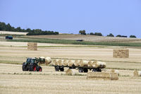 harvested corn field, straw bales will be collected