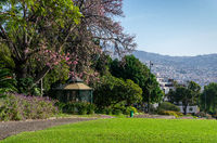 View of Funchal city from the park