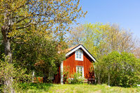 Red wooden house in Sweden