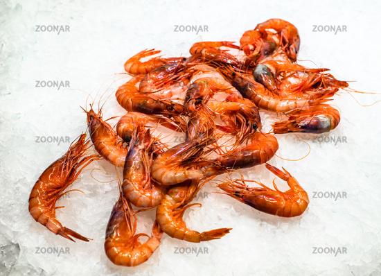 Fresh prawns at fish market