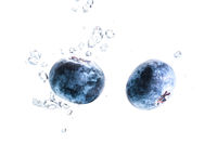 Two organic Blueberry sinking into water with air bubbles white background. Macro detailed closeup.