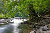 River Wutach in the Wutach Gorge, Black Forest