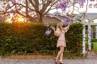 Admiring the purple Jacaranda tree flower clusters