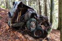 Car wreck in Forest