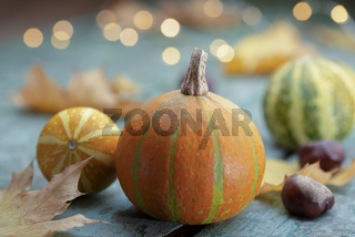 Decoration with colorful pumpkins and lights