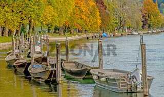Herbst am Hochrhein, Schaffhausen, Schweiz
