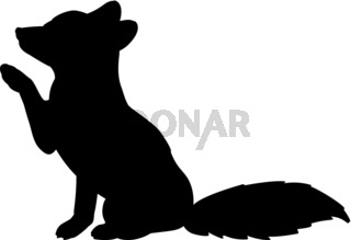 Silhouette of little fox. Cute young animal