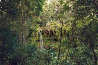 waterfall in Amber mountain, Madagascar