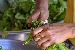Hands cutting and preparing fresh vegetables to eat