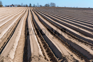 ploughed furrows in the ground, smooth the ruts of ploughed land
