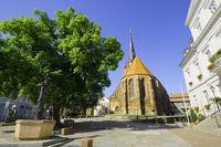 Parish church St. Nikolai, Bad Freienwalde, Brandenburg, Germany
