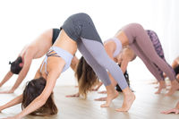Group of young sporty sexy women in yoga studio, practicing yoga lesson with instructor, forming a line in Adho mukha svanasana downward dog asana pose. Healthy active lifestyle, working out in gym