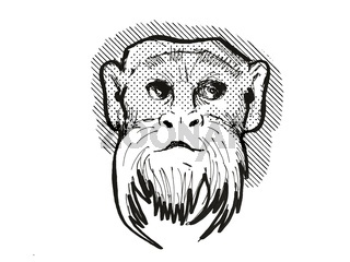 Emperor Tamarin Monkey Cartoon Retro Drawing