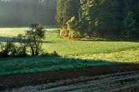 Fields, meadow and forest in autumn, Fraenkische Alb, Hesbucker Schweiz, Bavaria
