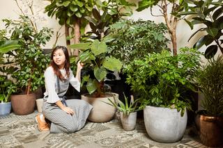 Floristin von Eventfloristik dekoriert Grünpflanzen
