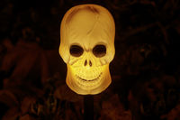 Skull Night Light Glowing in the Dark.