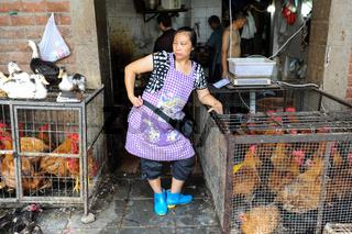 Chongqing, China, Chinesische Gefluegelmetzgerin