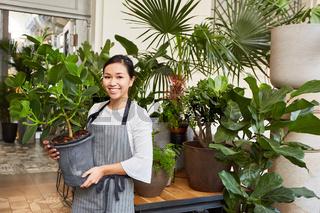 Floristin oder Gärtnerin trägt eine Grünpflanze