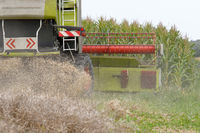 Combine harvesters in use