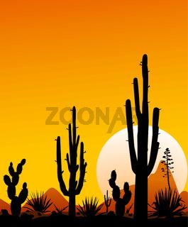 Mexico desert sunset 3