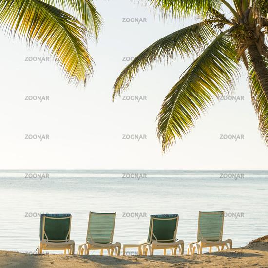 Tropical Beach Deckchairs