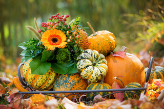 Colorful autumn decoration in a garden