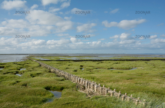Coastal Protection at North Sea in Wattenmeer National Park called Lahnung,Germany