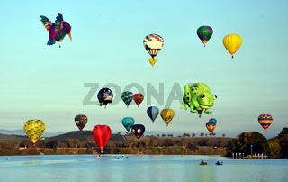 Big hummingbird, green frod and colourful Hot air balloons flying in the air above Lake Burley Griffin and Black Mountain, as part of the Balloon Spectacular Festival.