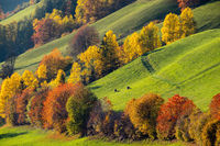 Autumn Santa Magdalena famous Italy Dolomites mountain village environs hills. Picturesque traveling, seasonal and countryside beauty concept background.