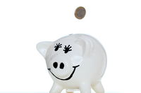 white piggy bank with coin