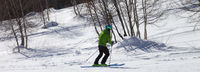 Skier downhill on snowy ski slope with birch trees