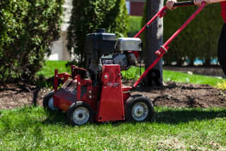 lawn aeration in the summer