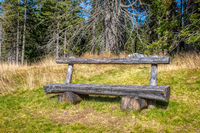 Wooden bench in the woods, sunnz meadow and trees in background