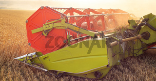 Combine harvester close up. Combine harvester harvesting wheat at sunset.