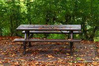 Picnic table in autumn