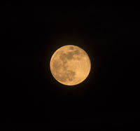 Blue Moon Square Image