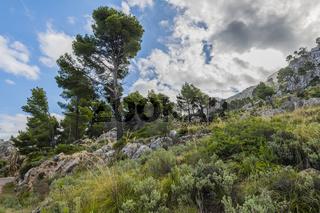 Mallorca Landschaft Kuestenstrasse Norden, Majorca Landscape northern coastal highway