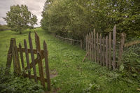 The old pasture fence