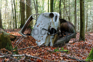 Autowrack im Wald, Schwarzwald