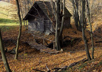 old barns in the woods 2