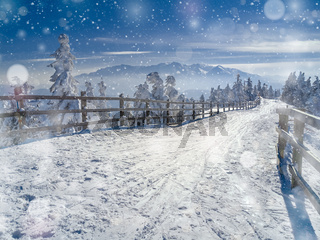 Winter snow wonderland landscape. Christmas scenic background with falling snow and bokeh soft lights, trees and road covered in snow. View of Bucegi mountains in the background, Brasov, Romania.