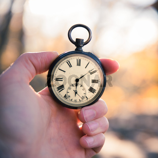 Time goes by: vintage watch outdoors, hand-held; wood and leaves;