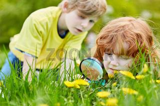 Kinder entdecken Natur mit Lupe