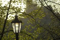 Street light in Prague