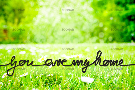 Sunny Spring Meadow, Daisy, Calligraphy You Are My Home