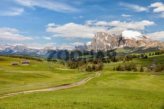 Alpine meadows on the Alpe di Siusi