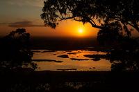 Sunrise lake views through the treetops