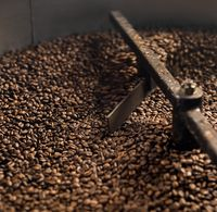 Mixing device of coffee bean roaster at work